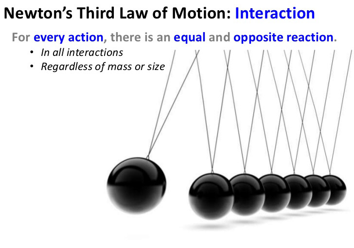newton every action